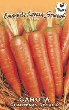 carota-chantenay-royal